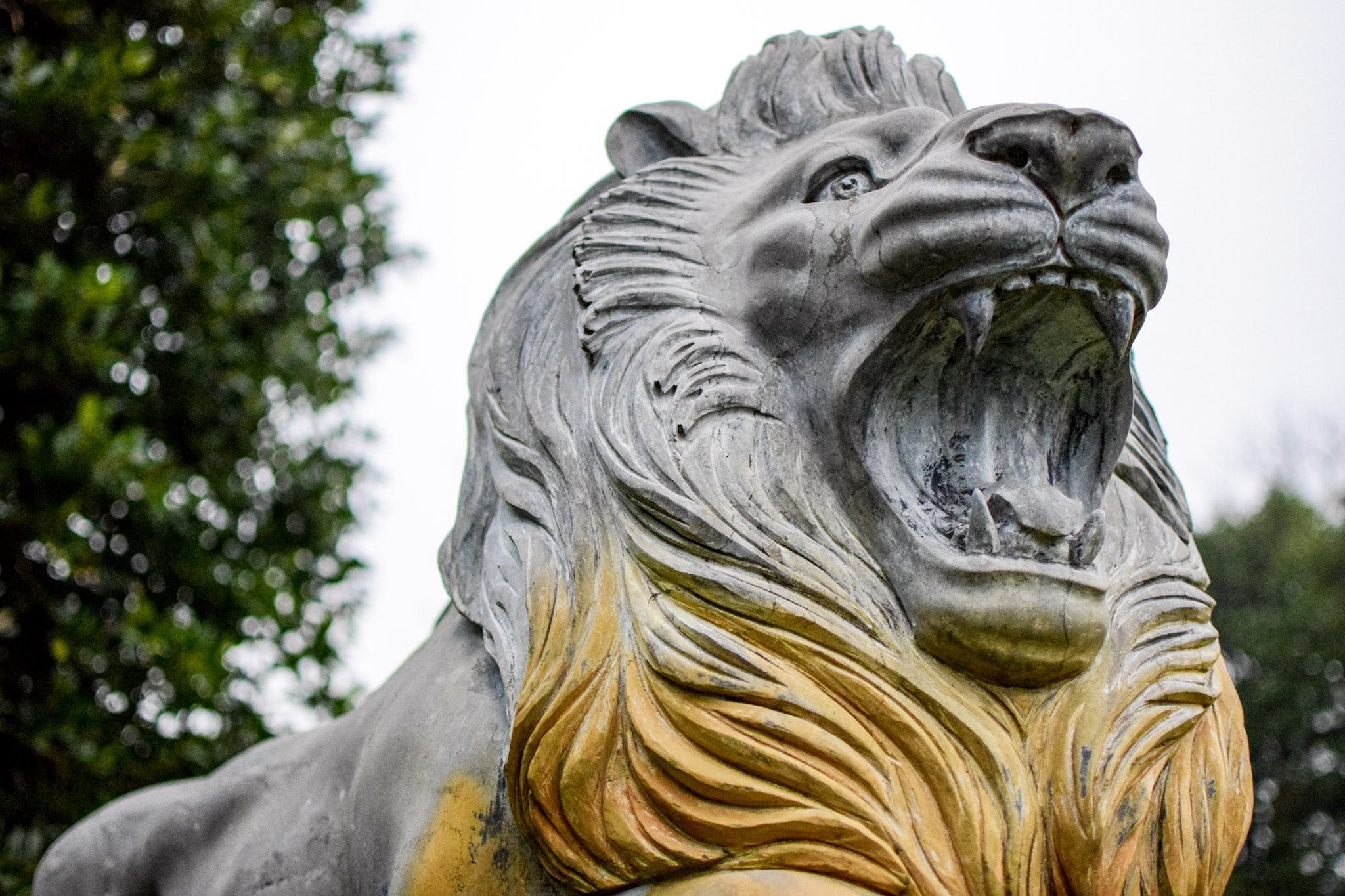 Free stock photo of animal, carved stones, lion, sculpture