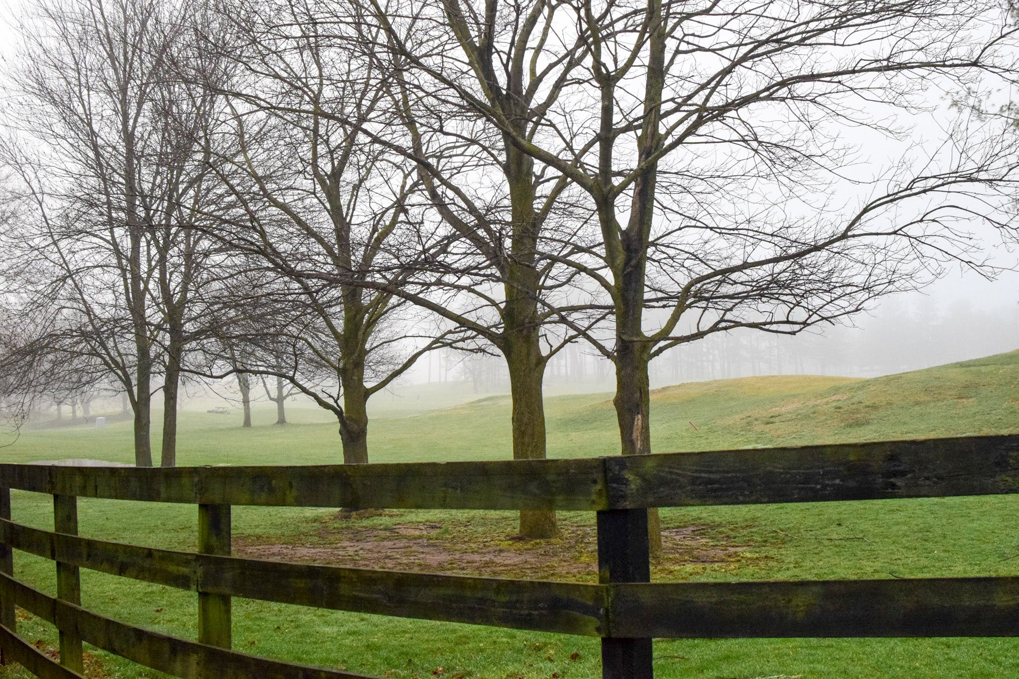 Free stock photo of fence, landscape, spring, trees