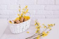 flowers, table, eggs