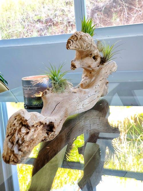 Free stock photo of diy, home decor, Home DIY