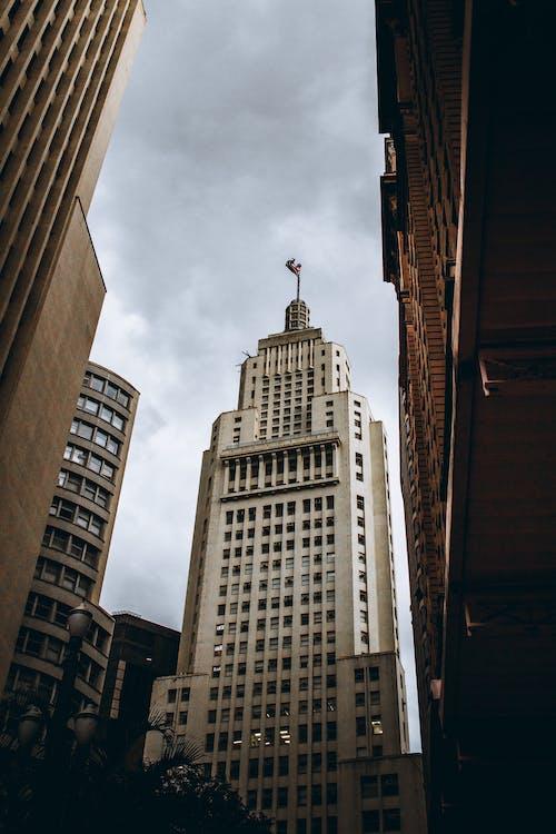 Foto stok gratis Arsitektur, bidikan sudut sempit, biro, bisnis