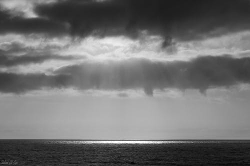 Free stock photo of black and white, sun