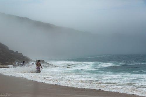 Free stock photo of fog, ocean, waves