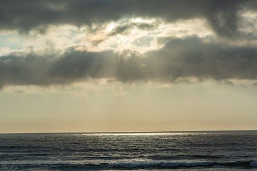 Free stock photo of spot, sun