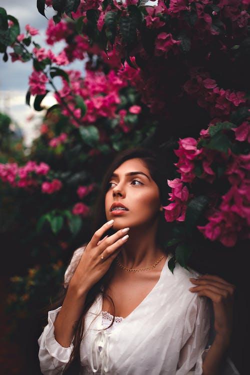 Foto stok gratis bugenvil, bunga-bunga merah muda, ekspresi muka, ekspresi wajah