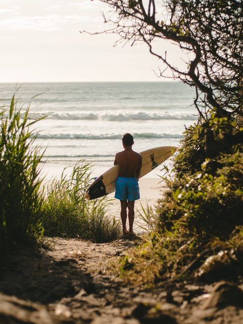 Kostenloses Stock Foto zu asiaten, erholung, ferien, festhalten