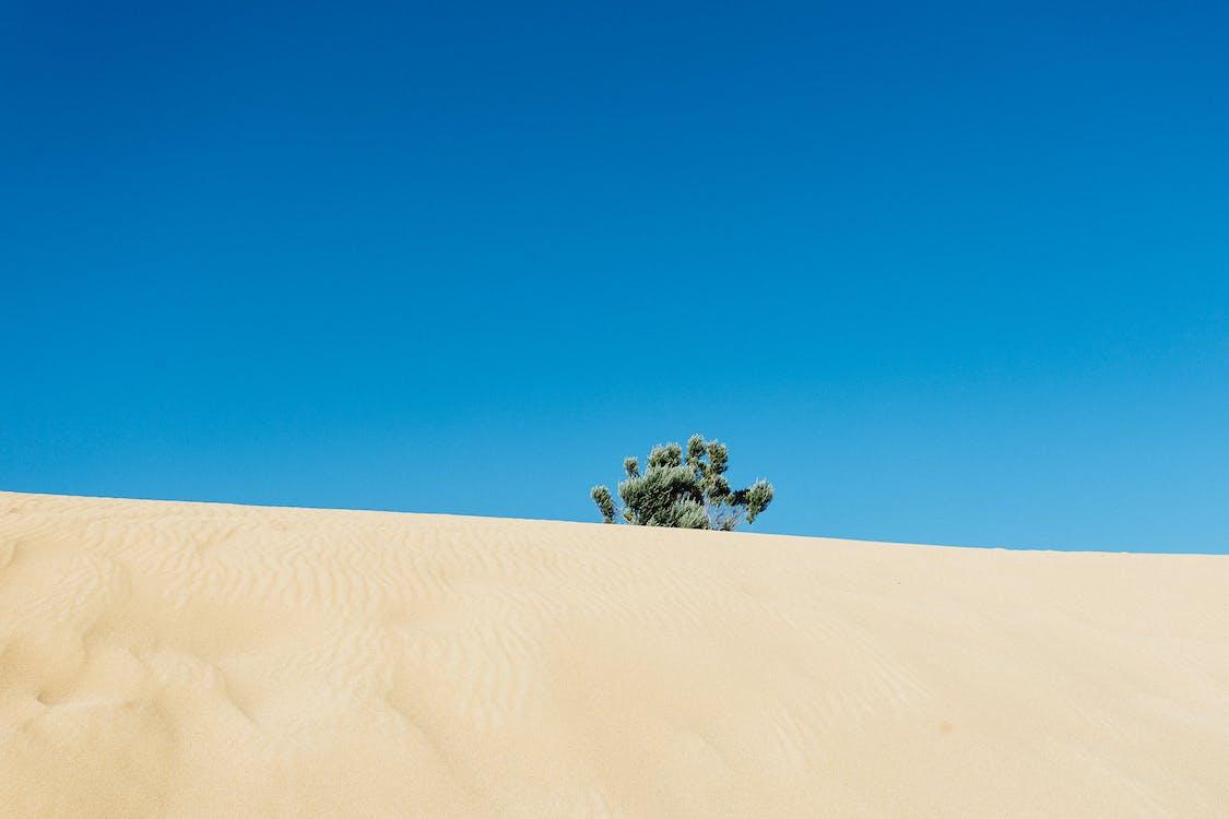 areia, árido, aventura