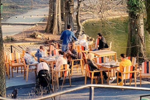 公園, 冬季, 天性, 娛樂 的 免費圖庫相片