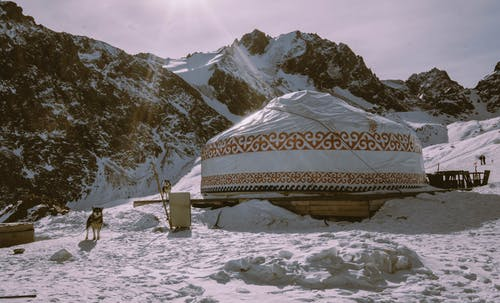 White and Brown Tent on Snow Covered Ground