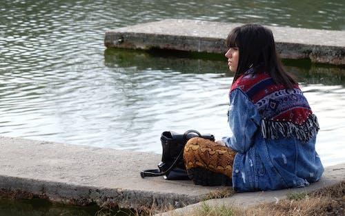 公園, 冬季, 坐下, 天性 的 免費圖庫相片