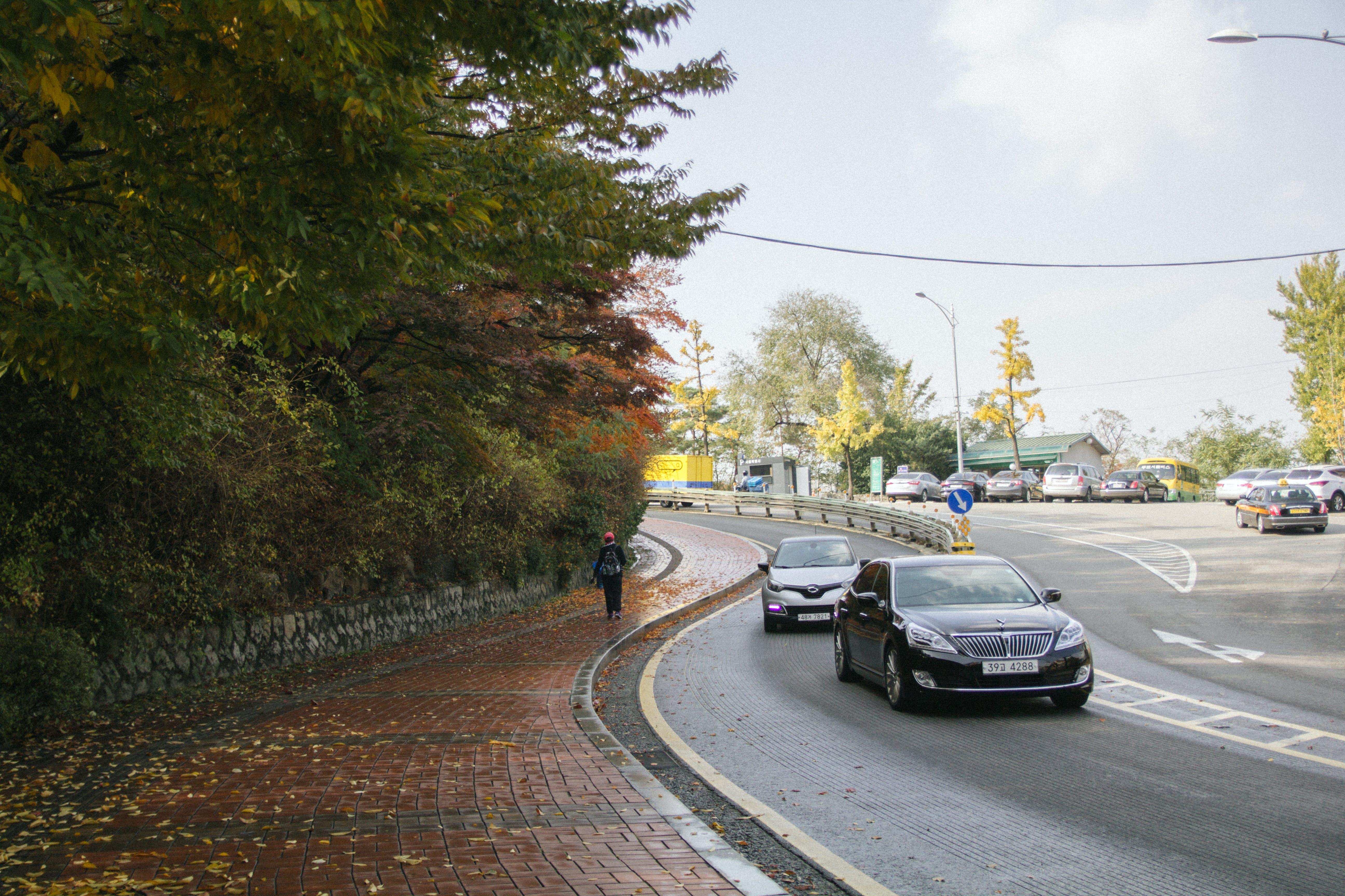 asfalt, bil, biler