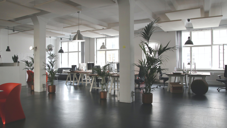 office images pexels free stock photos rh pexels com