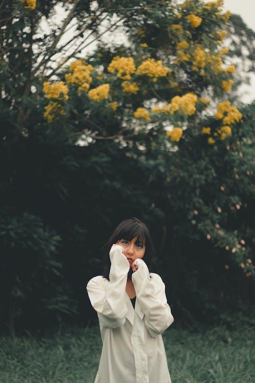 Fotos de stock gratuitas de amable, armonía, asiática, belleza