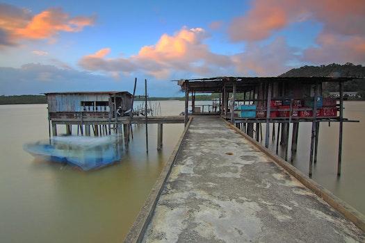 Free stock photo of wood, jetty, sea, dawn