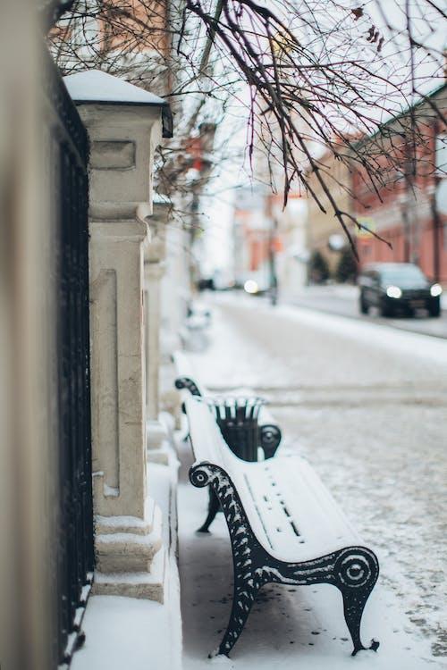 Imagine de stoc gratuită din acoperit de zăpadă, anotimp, bancă