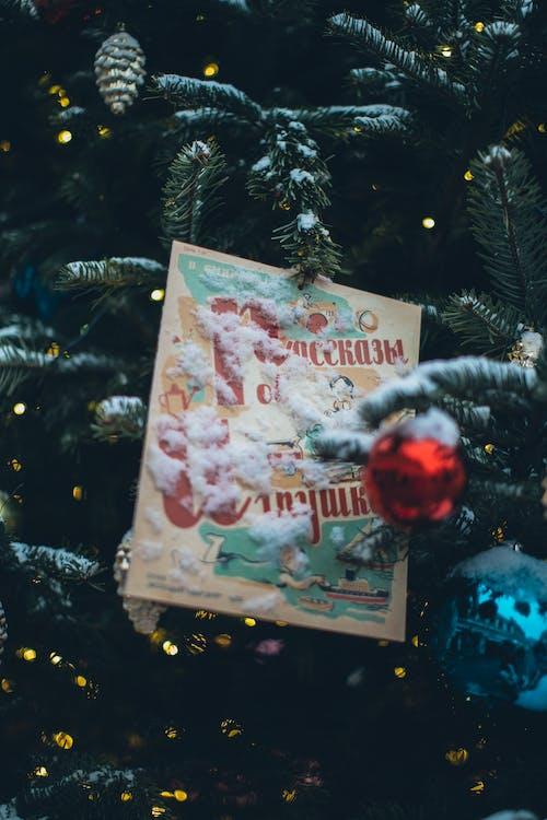 Foto De Tarjeta De Navidad En árbol De Navidad