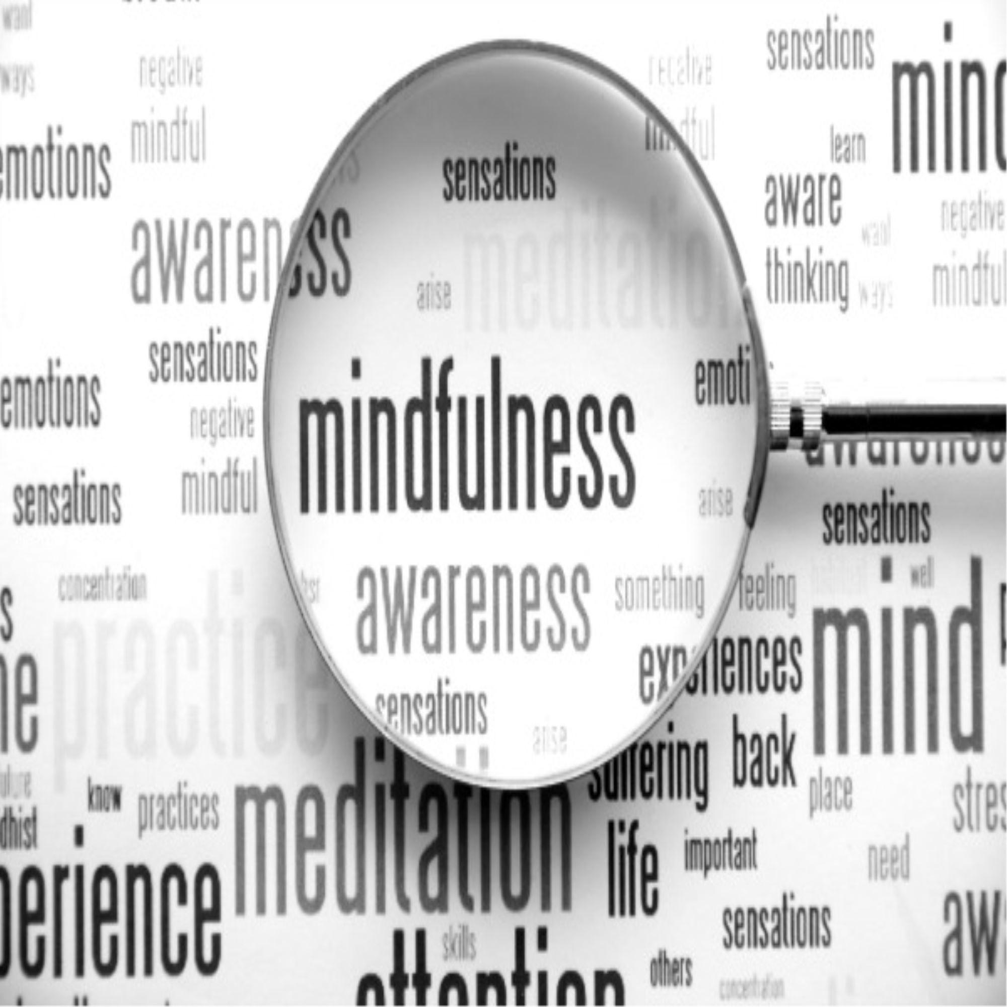 Atemberaubend Lebenslauf Für Therapeuten Psychische Gesundheit Ideen ...