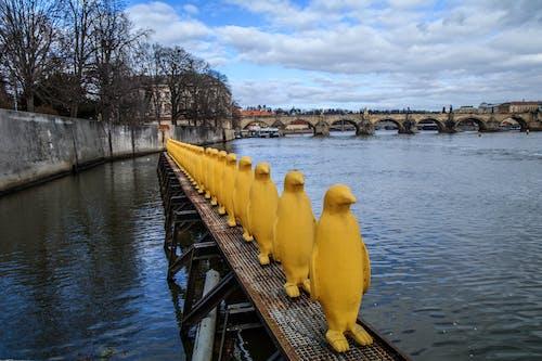 Free stock photo of penguins, statue, yellow