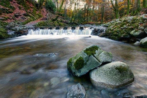 北爱尔兰, 垫脚石, 愛爾蘭, 水 的 免费素材图片
