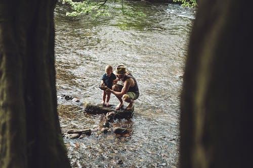 Immagine gratuita di acqua, adulto, albero, amicizia