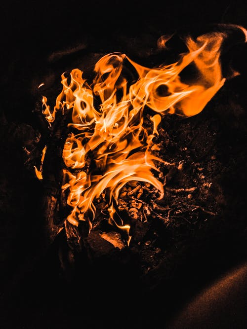 Free stock photo of camp, camp fire, camp site, campaign