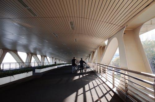 Foto profissional grátis de andando na ponte, bros, diariamente