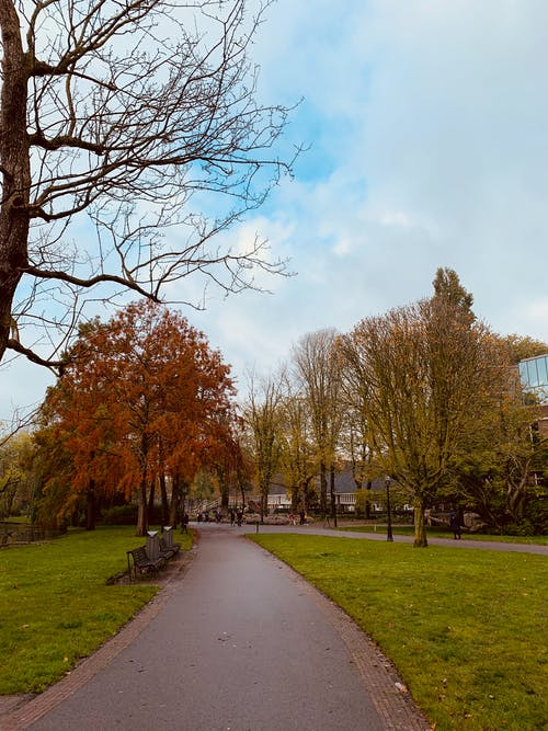 Free stock photo of amsterdam, bicycle path, clouds
