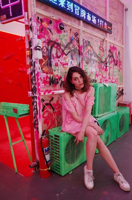 Foto profissional grátis de exibição, exposição, sentado