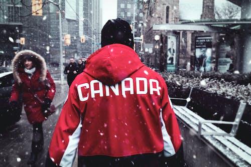 Ingyenes stockfotó downtown toronto, dzseki, ember gyalog, emberek témában
