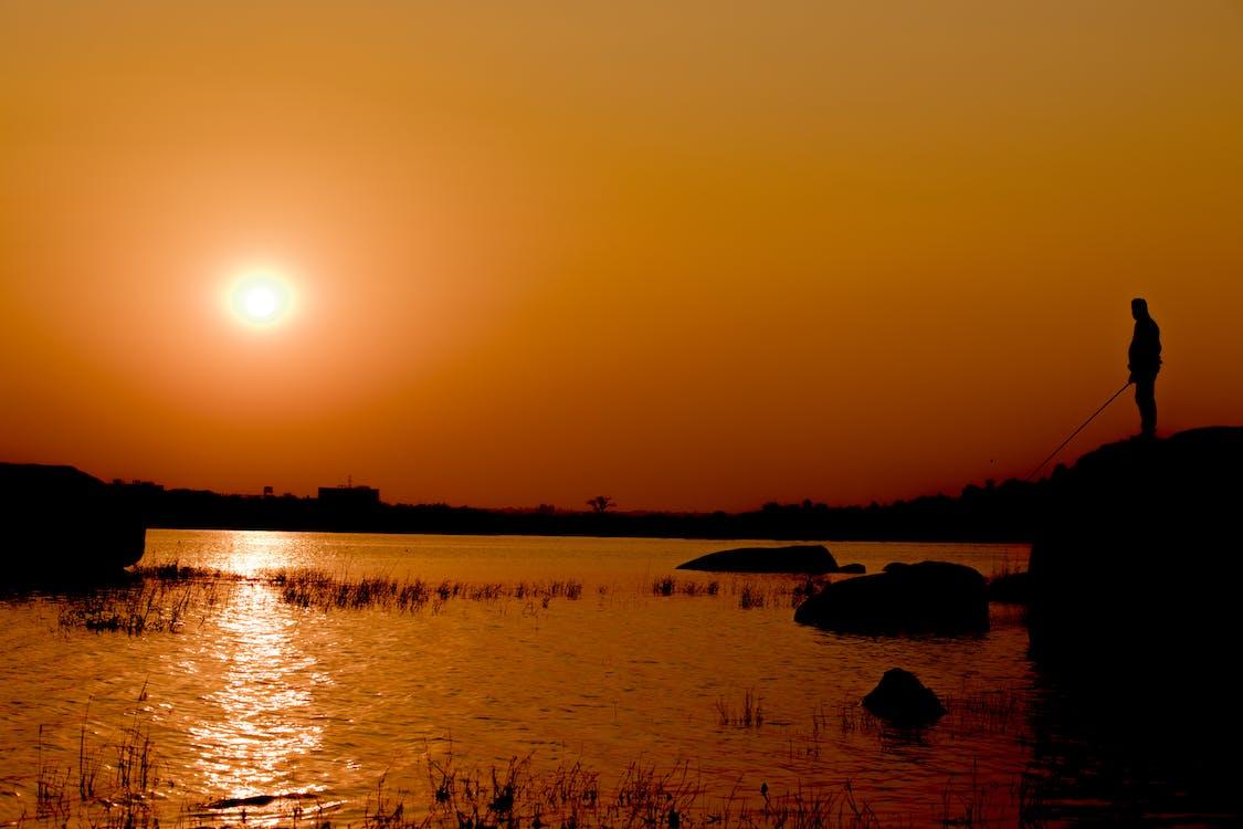 evening sun, fishing, golden sun