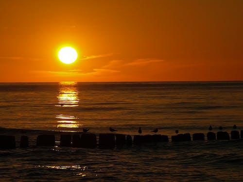 Free stock photo of Baltic Sea, Beautiful sunset, sea