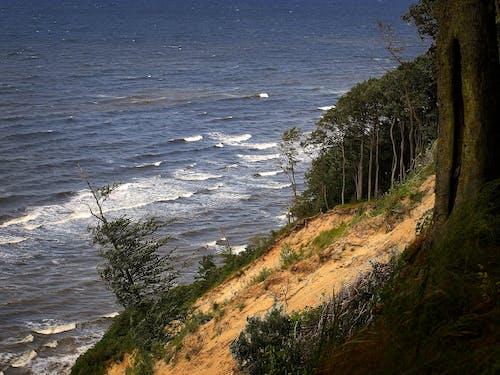 Free stock photo of Baltic Sea, Cliff Edge