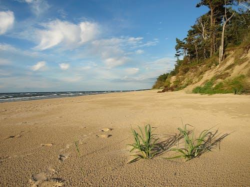 Free stock photo of Baltic Sea, sand beach, sea