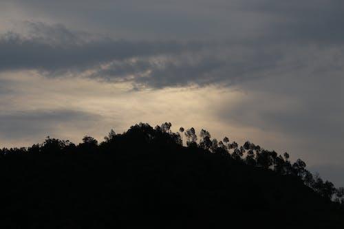 Free stock photo of 4k wallpaper, black wallpaper, morning sun