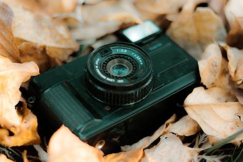 Free stock photo of old camera, vintage camera