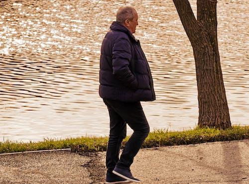 人, 公園, 冬季, 天性 的 免費圖庫相片