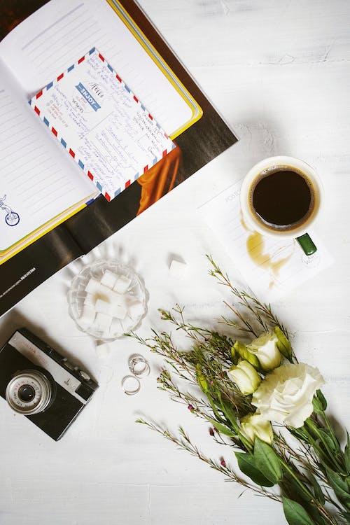 Kostnadsfri bild av blad, blomma, bord, dryck