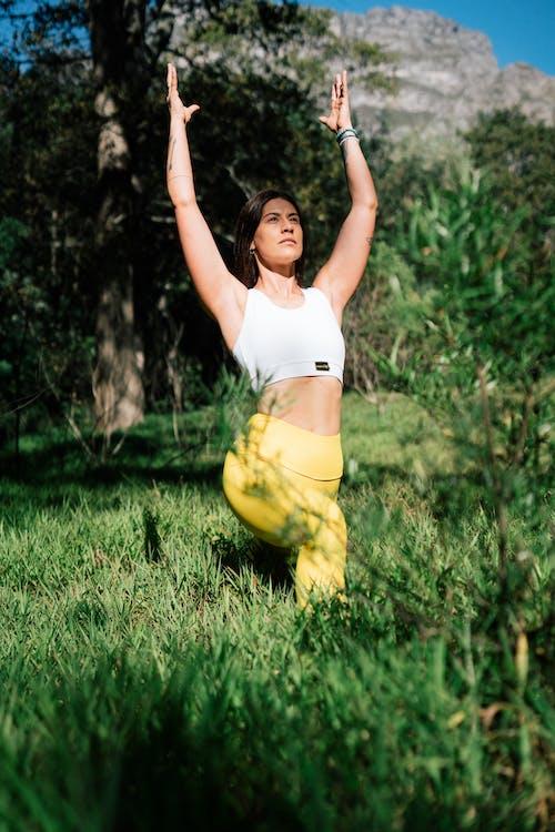 Gratis lagerfoto af aktiv, aktivitet, arme hævet