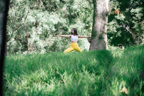 Foto profissional grátis de adulto, alongamento, árvore, atividade física