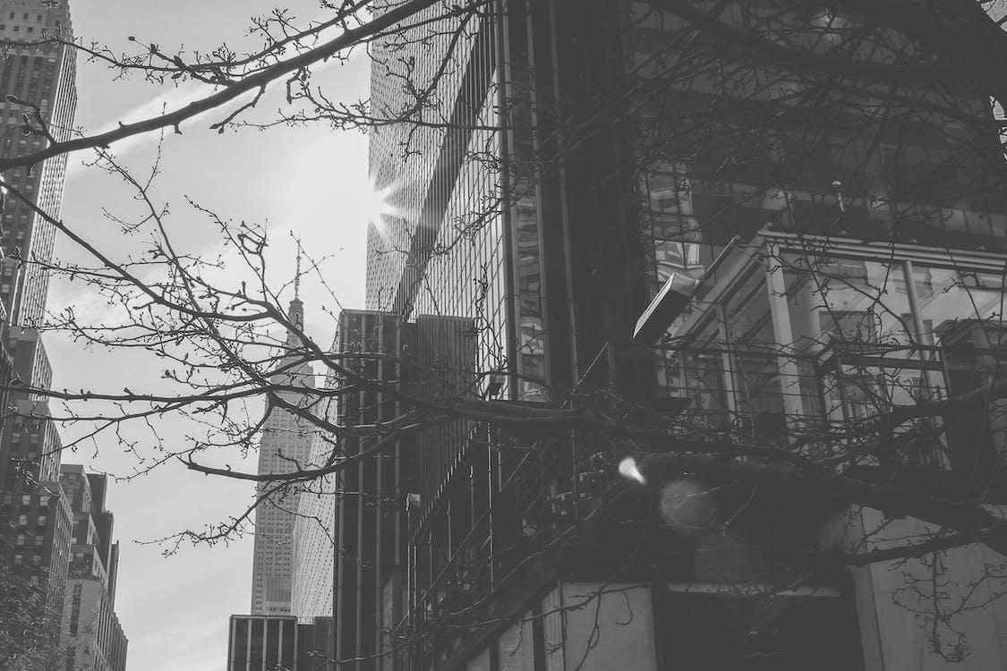 bangunan, bw, gedung
