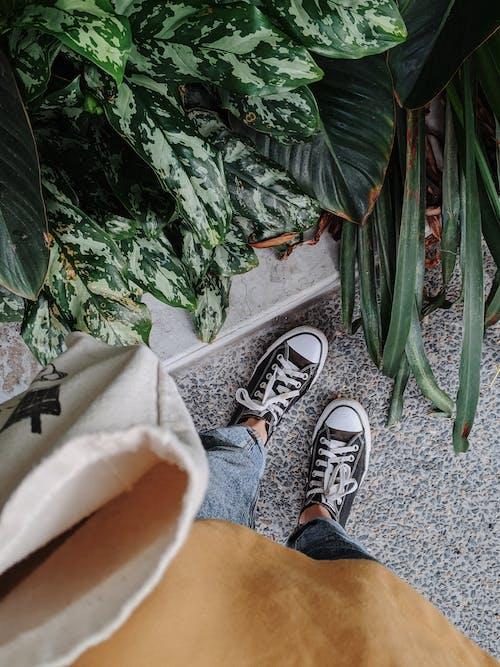 Foto profissional grátis de bolsa de compras, calçada, calçados, comprador