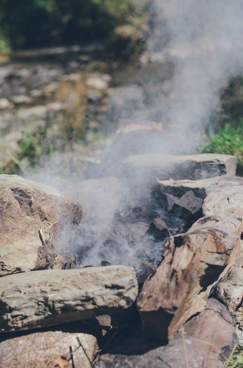 Darmowe zdjęcie z galerii z lato, natura, ognisko, turystyka