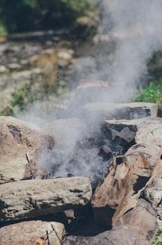 Free stock photo of nature, summer, tourism, bonfire