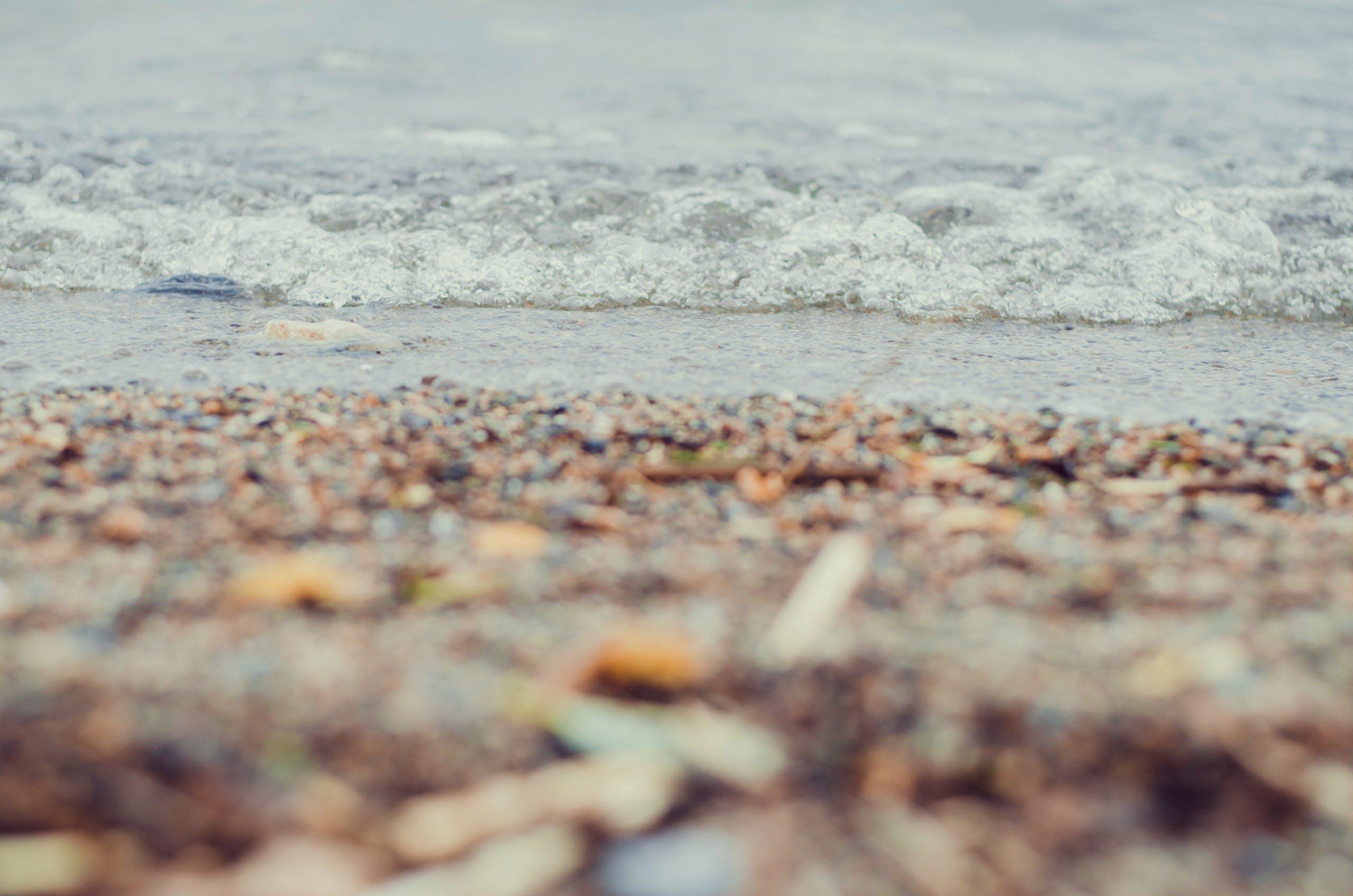 Free stock photo of beach, lake, nature, summer