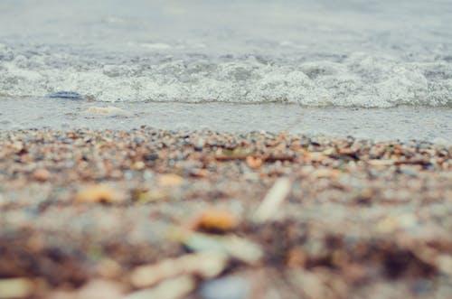 Foto d'estoc gratuïta de aigua, estiu, natura, platja