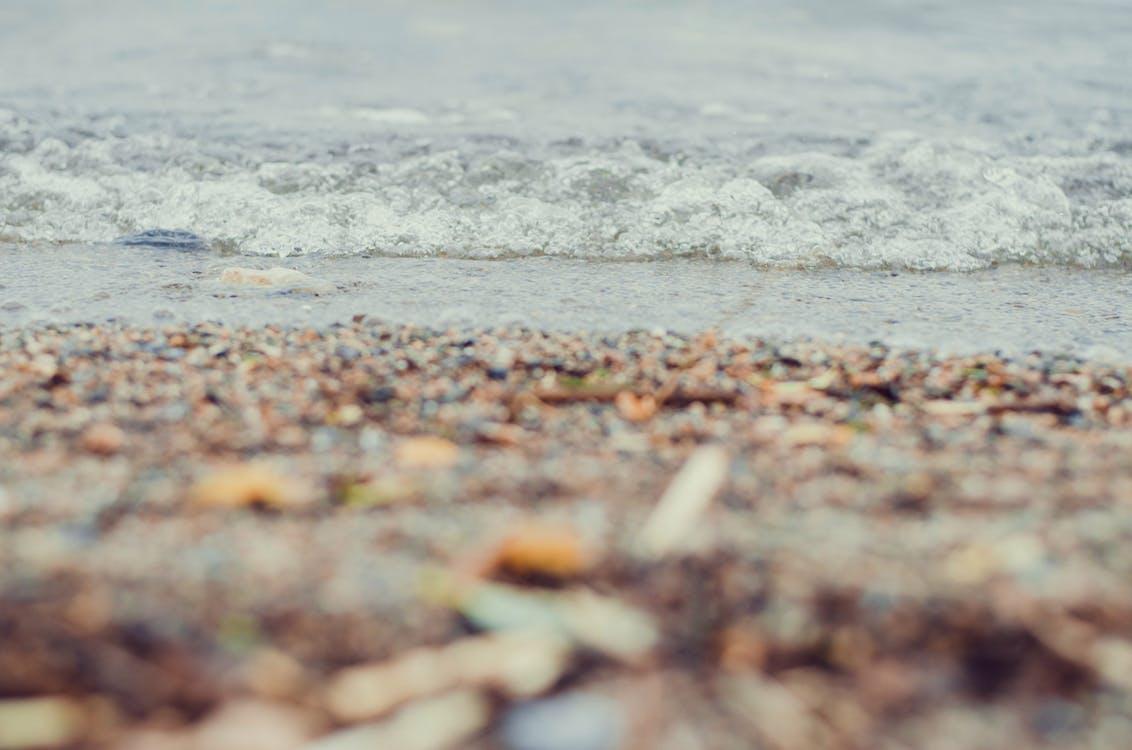acqua, estate, natura