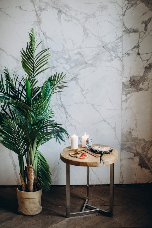 Plant Next to Brown Wooden Table
