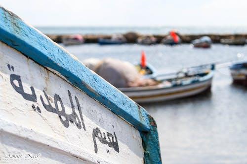 Foto stok gratis Arab, kapal, mahdia, memancing