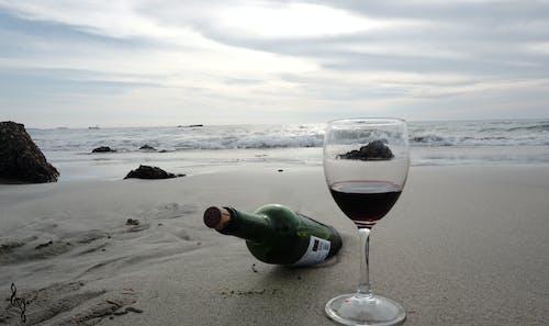 Free stock photo of bach wine, beach, beach front