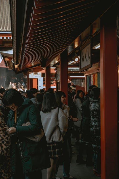 Free stock photo of buddhism, castle, japan